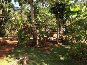 namaste-yoga-farm
