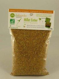 graines-a-germer-millet
